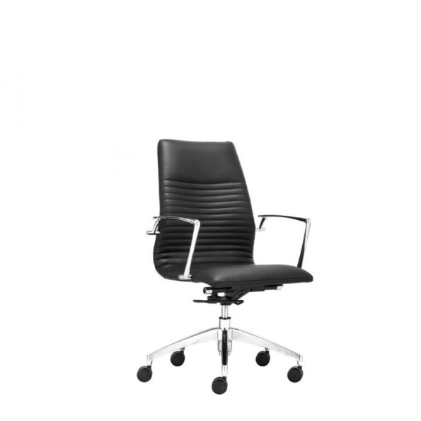 Lion lowback office chair