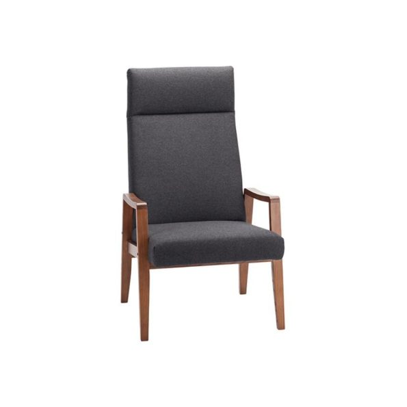 Jonah Lounge Chair